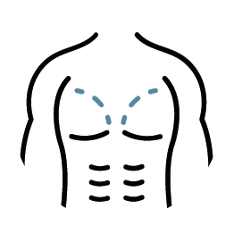 Icon-brust-maennerbrust